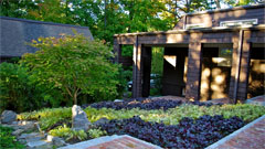 Landscaping and garden design thumbnail