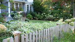 Wood fence and garden in New Rochelle